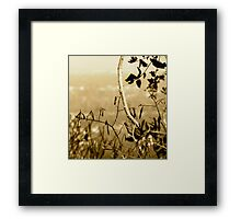 Topiary Gorge  Framed Print