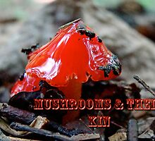 Calendar - Mushrooms and Their Kin by MotherNature