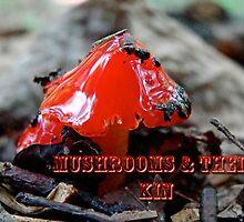 Calendar - Mushrooms and Their Kin by MotherNature