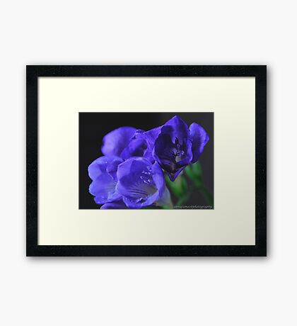 blue hope, ..no other utopia Framed Print