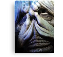 Is it a monster? Canvas Print