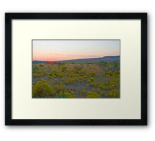 There Is Beauty In All Things Framed Print