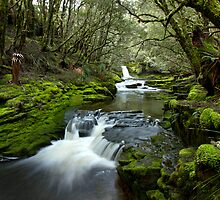 Mysterious Running Water on the Overland Track by andychiz