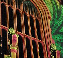 Northern Lights - Bonython Hall Lions, Sheilds and an Arch by bsn-photography