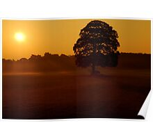 """""""MORNING RAYS"""" Poster"""