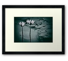 Twin Lily flowers pair Framed Print