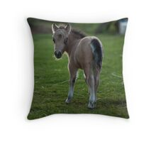 Our Latest Addition Throw Pillow