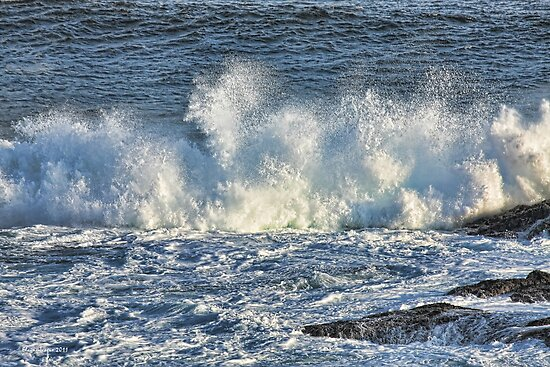 A Big Splash by Elaine Teague
