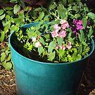 Flowers In The Garden by Bearie23
