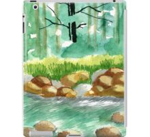 Waterscape iPad Case/Skin