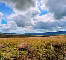 Big Bowland Sky by John Hare