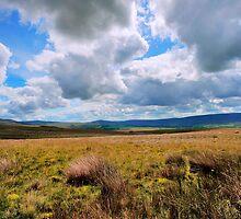 Big Bowland Sky by John Hare