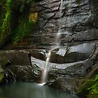 Sydney Waterfalls - Willoughby Falls #1 by vilaro Images