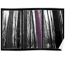 Triptych - Bamboo Poster