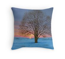 CAVAN SNOW 2  Throw Pillow