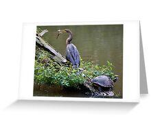 Anhinga with Fish Greeting Card