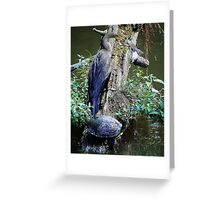 Anhinga, Turtle and Catch of the Day Greeting Card