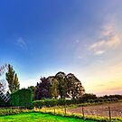 Cromer Windmill by Lea Valley Photographic