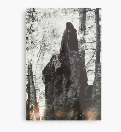 The Harpy Metal Print