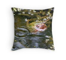Snapping turtle study 3 Throw Pillow