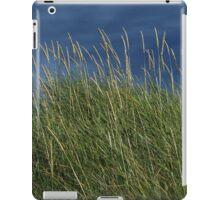 Dune Grass landscape iPad Case/Skin