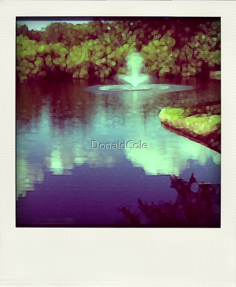 Our pond by DonaldCole