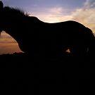 Solstice Sunset by Darren Allen
