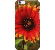 Incendie Fleurir iPhone Case/Skin