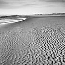 Dollymount Strand in Dublin by Dave  Kennedy