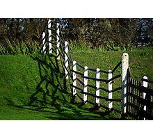 Frantic fence Photographic Print