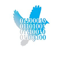 bird binary code dove peace design Photographic Print