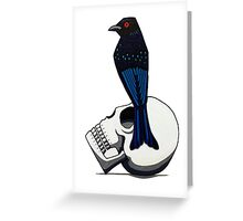 Spangled Drongo (Canary Series 1) Greeting Card
