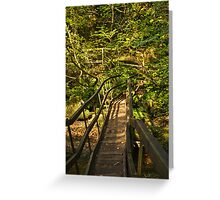 Log Bridge, Becky Falls Greeting Card