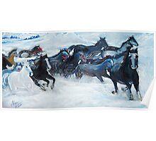 Wild Wild Horses Poster