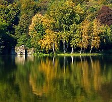 Stourhead Reflections 2 ~ Wiltshire by Susie Peek