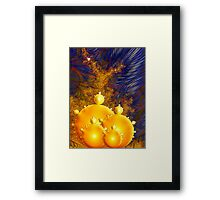 Meet the Simurghs Framed Print