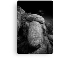 Squint Nose Rock Canvas Print