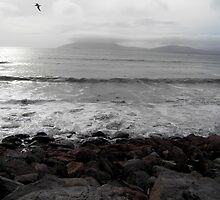 Atlantic Ocean from Waterville by Coexistism