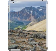 View of Jasper National Park in the Canadian Rockies iPad Case/Skin