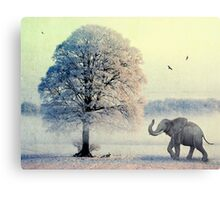 Oaky and Friends Canvas Print