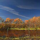 """ Prairie Pond "" by fortner"