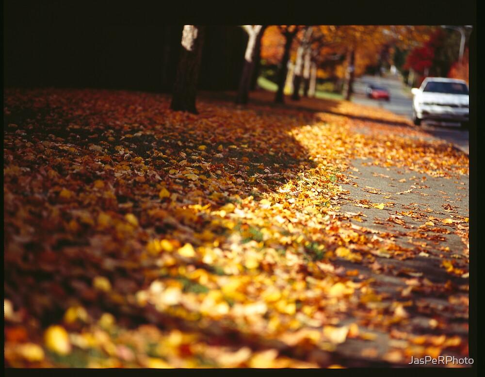 Street leaves  by JasPeRPhoto
