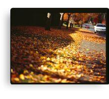 Street leaves  Canvas Print