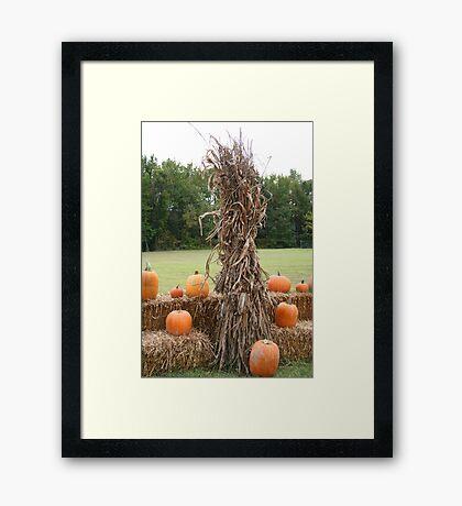 Harvest Time 4 Framed Print