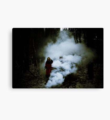 From The Ashes Canvas Print