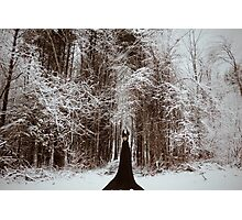The Watcher Photographic Print