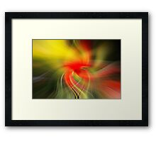 Twirl art from a poppy picture  Framed Print