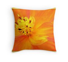 Orange Cosmos Throw Pillow