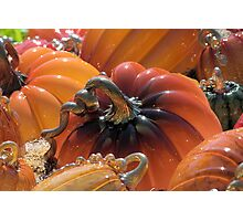 Oh My Gourd! Photographic Print