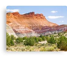 Colorful Cliffs Canvas Print